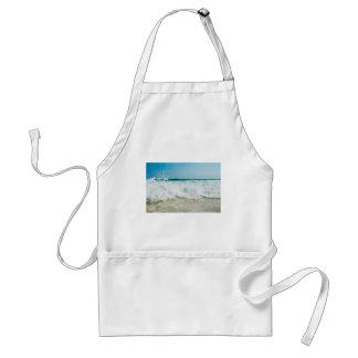 surf standard apron