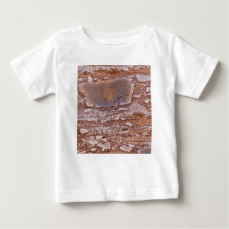Surface of a red sandstone with siliceous geods baby T-Shirt