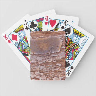 Surface of a red sandstone with siliceous geods bicycle playing cards