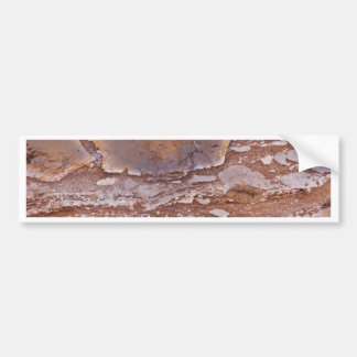 Surface of a red sandstone with siliceous geods bumper sticker