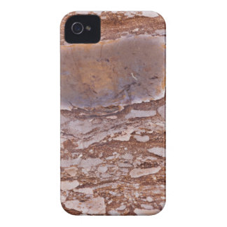 Surface of a red sandstone with siliceous geods iPhone 4 case
