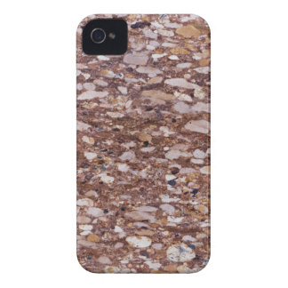 Surface of a red sandstone with siliceous geods iPhone 4 Case-Mate case