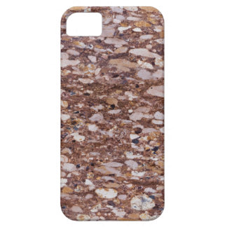Surface of a red sandstone with siliceous geods iPhone 5 case
