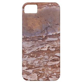 Surface of a red sandstone with siliceous geods iPhone 5 cover