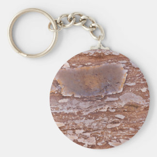 Surface of a red sandstone with siliceous geods keychain