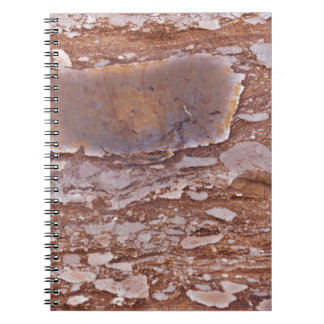 Surface of a red sandstone with siliceous geods notebook