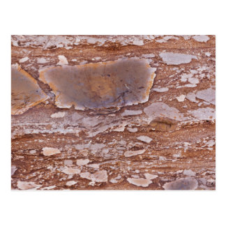 Surface of a red sandstone with siliceous geods postcard