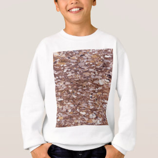 Surface of a red sandstone with siliceous geods sweatshirt