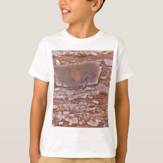 Surface of a red sandstone with siliceous geods T-Shirt