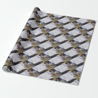 Surfer4 Wrapping Paper