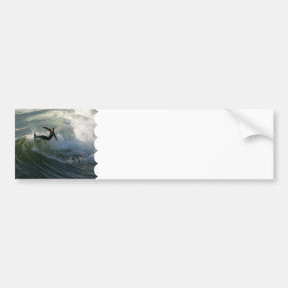 Surfer in a Wetsuit  Bumper Stickers