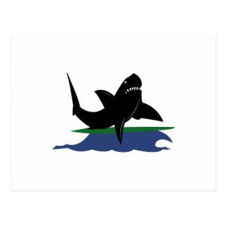 SURFER SHARK POSTCARD
