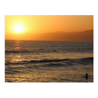 Surfing At Sunset In Venice Beach Postcard