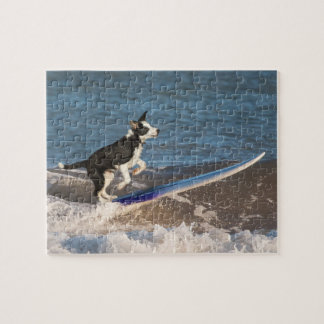 Surfing border collie jigsaw puzzle