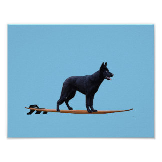 Surfing Dog - Black German Shepherd Poster