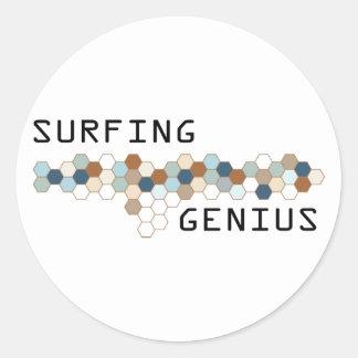 Surfing Genius Round Stickers