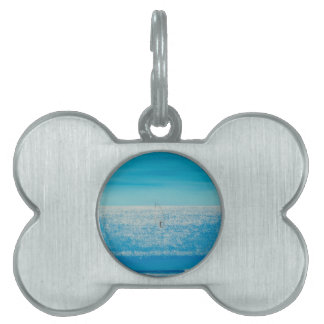 surfing on diamonds. pet name tag