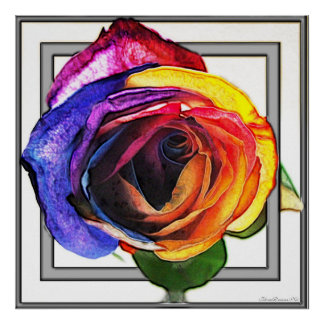 Surfing the Rainbow Rose Poster