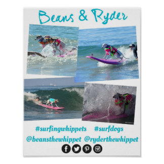 #surfingwhippets poster 1