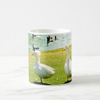Surprise Arizona Duck Pond Coffee Cup