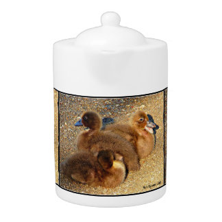 Surprise Arizona Ducklings Tea Pot