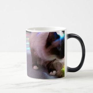 Surprise! CatM Magic Mug