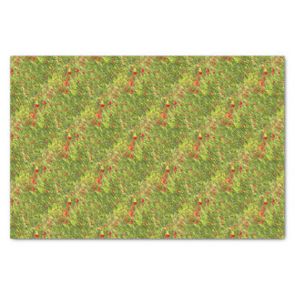 Surreal Hypnotic Poppies Tissue Paper