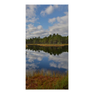 Suru Bog, Põhja-Kõrvemaa Nature Reserve, Estonia Perfect Poster