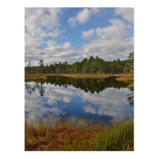 Suru Bog, Põhja-Kõrvemaa Nature Reserve, Estonia Postcard
