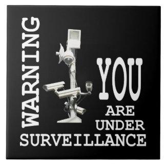 Surveillance video cameras tile