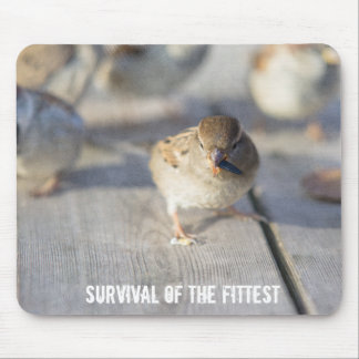 Survival Of The Fittest Mouse Pad