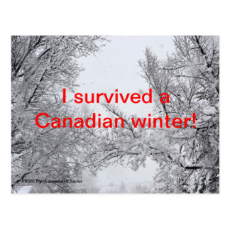 Survived a Canadian Winter Post Card