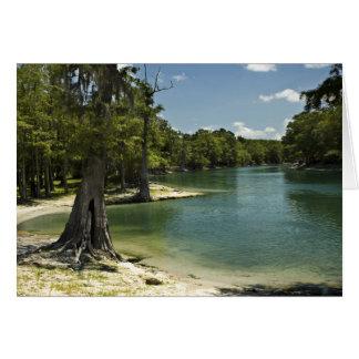 Suwannee River Beach Blank Card