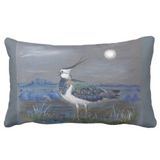 Cushions &a pillows
