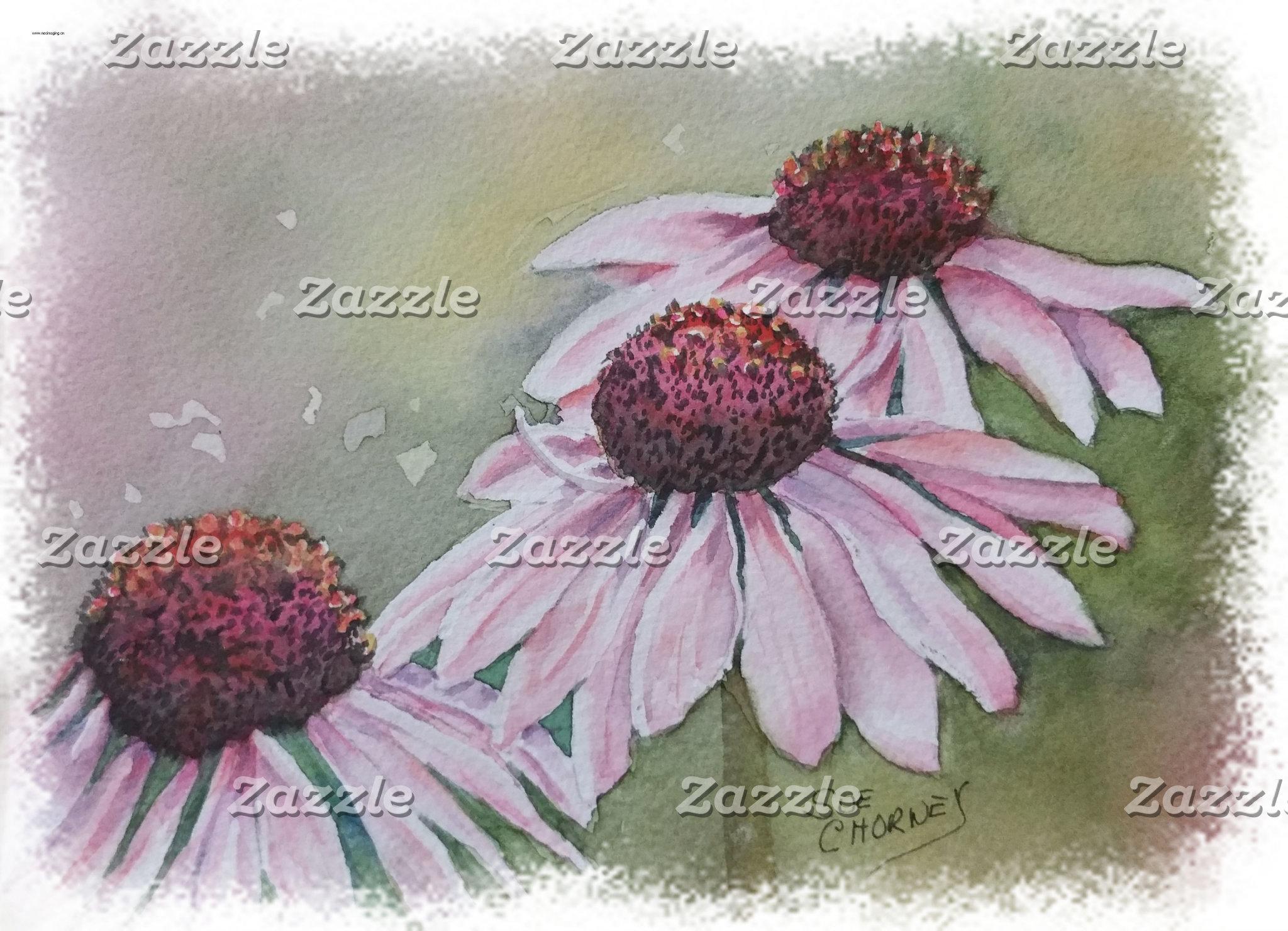 Echinacea - PINK