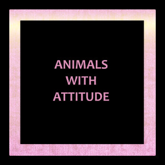 Animals With Attitude