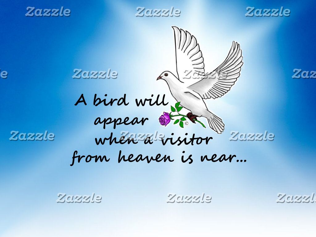 Bird, Visitor from Heaven