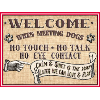 Doggie Door Mats