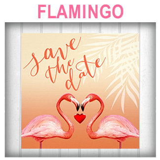 :: FLAMINGO