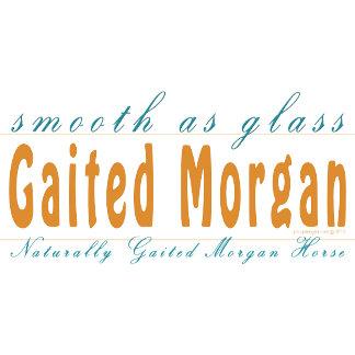 Gaited Morgan