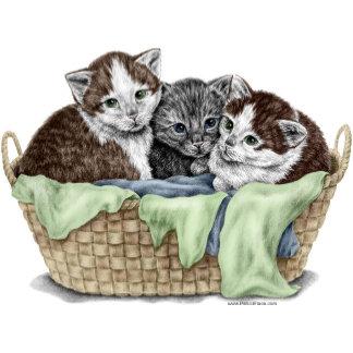 Cat Kitten Art