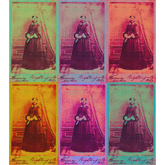 Florence Nightingale Colors
