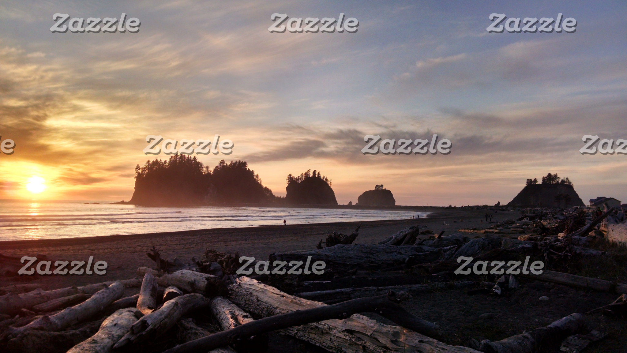 Western Washington Coast