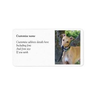 Greyhound lables