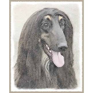Afghan Hound (Brown)
