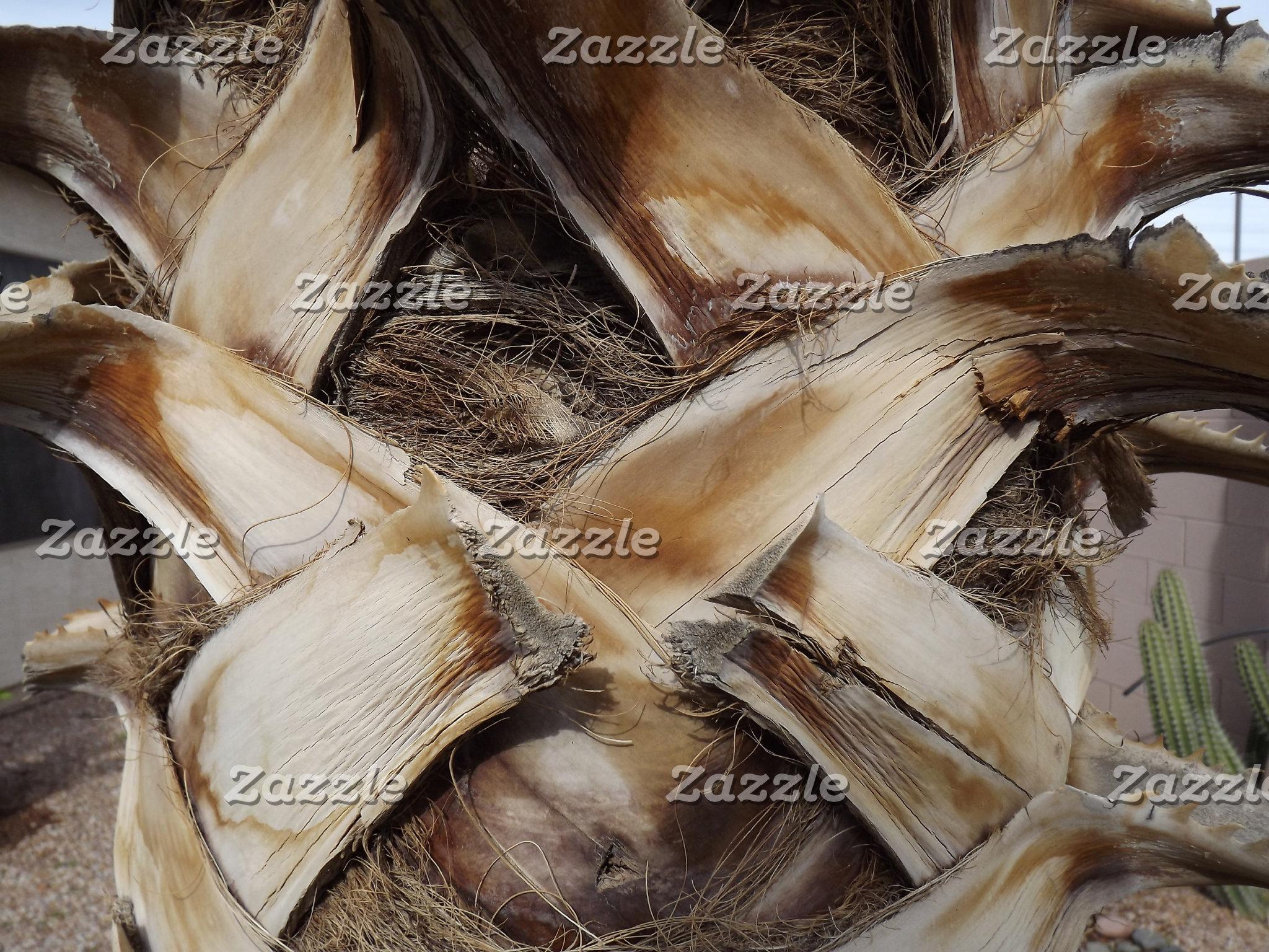 Palm Husk