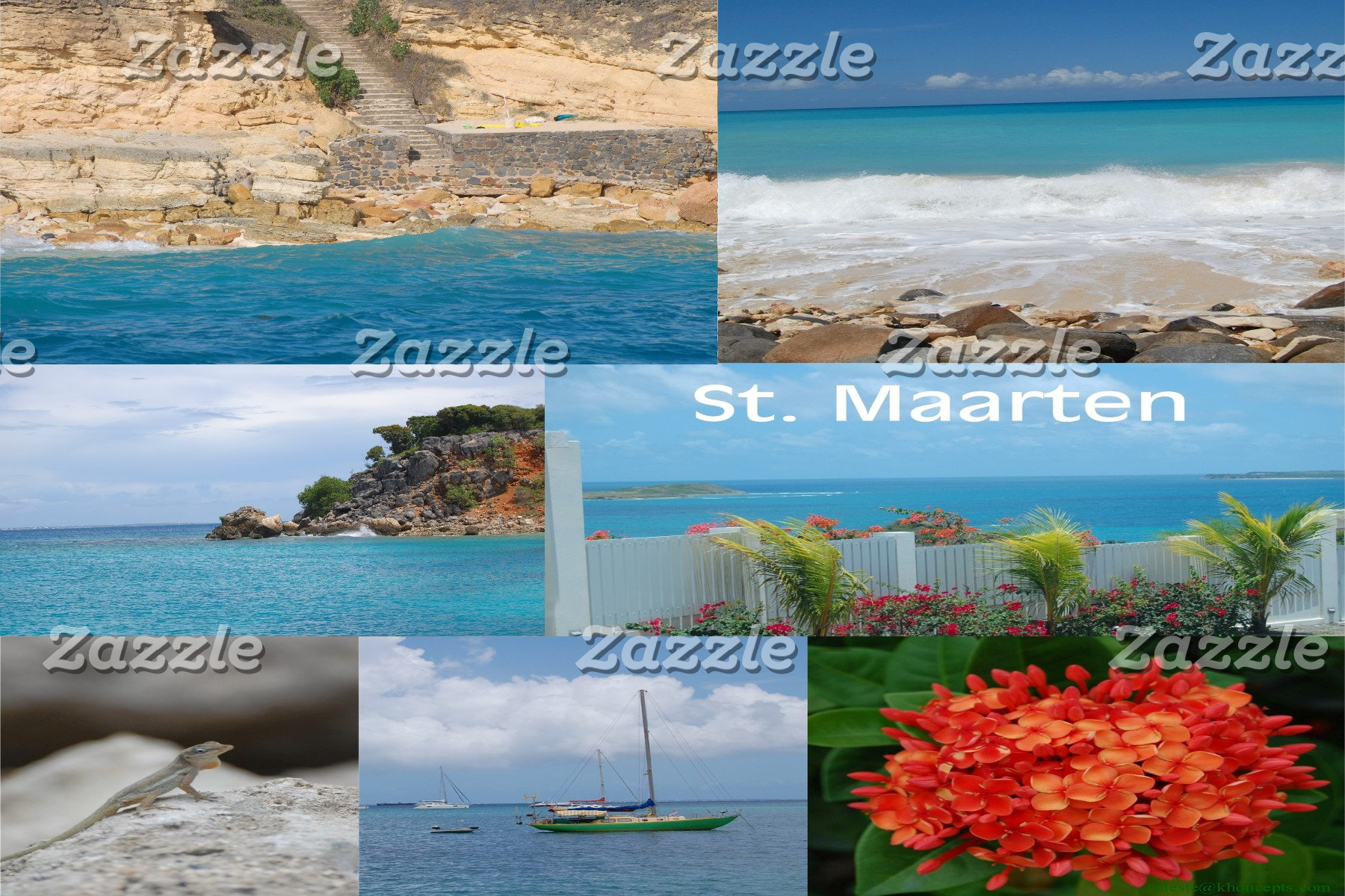 Sint Maarten - St. Martin Beach and Nature Collage