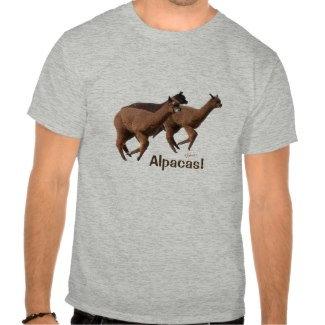 Clothing, T-shirts