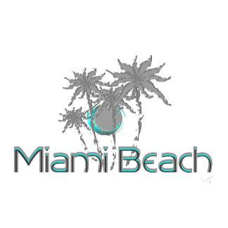 MIAMI Beach, Florida 🌴