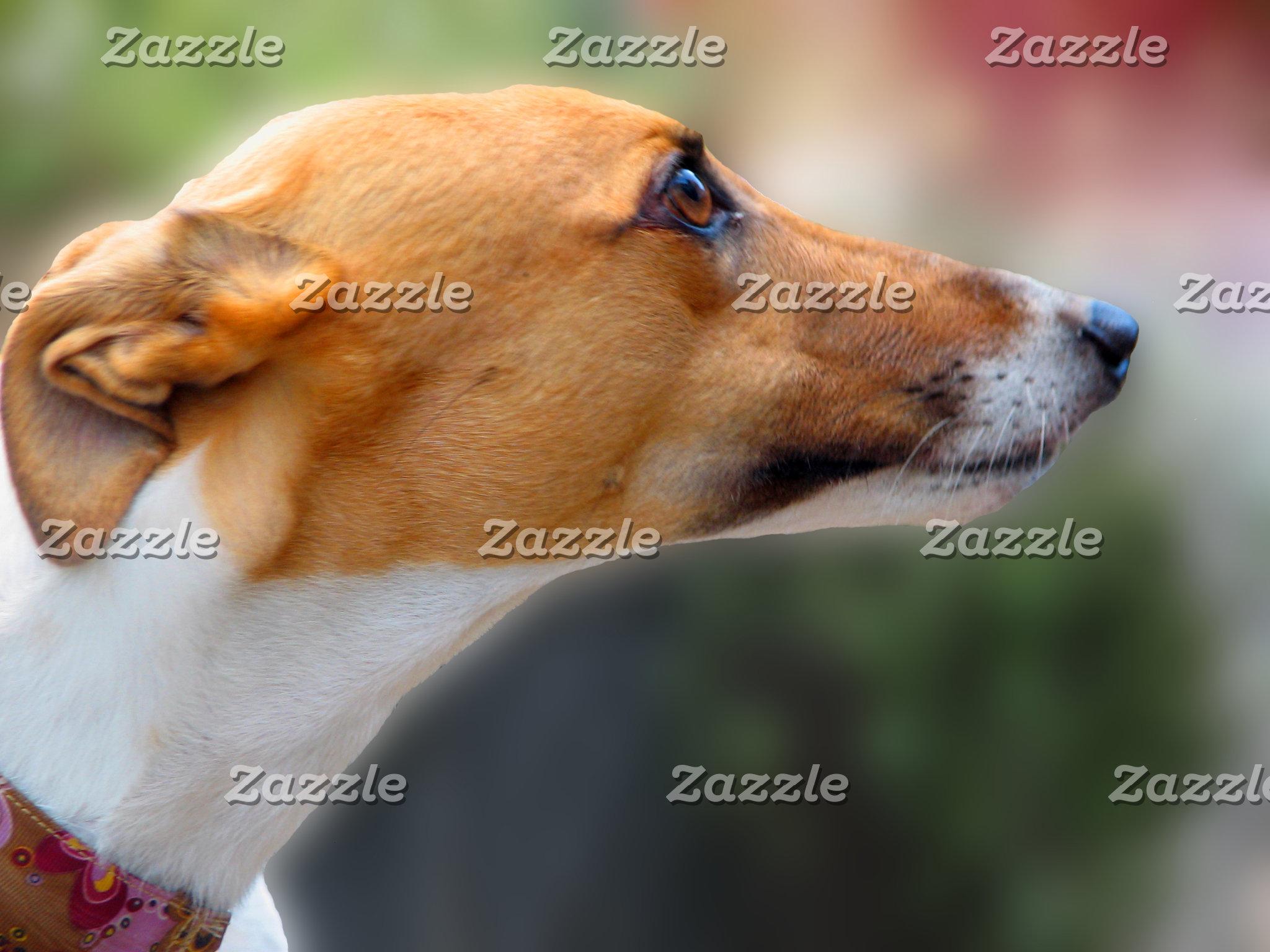 Greyhound jigsaw puzzles